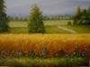 SlikaZitno Polje 40x50 ulje na platnu